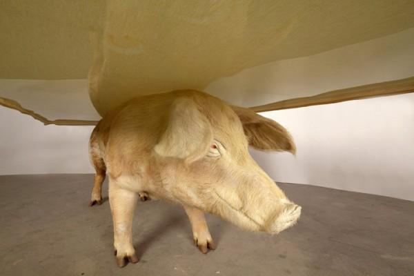 Необычные столики в виде животных (9)