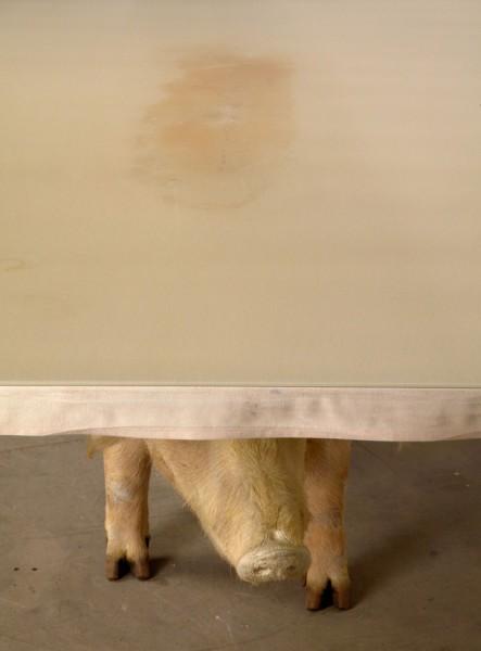 Необычные столики в виде животных (10)