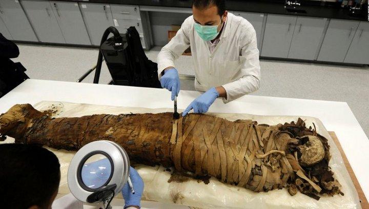 Археолог производит осмотр мумии. Египет, Каир.
