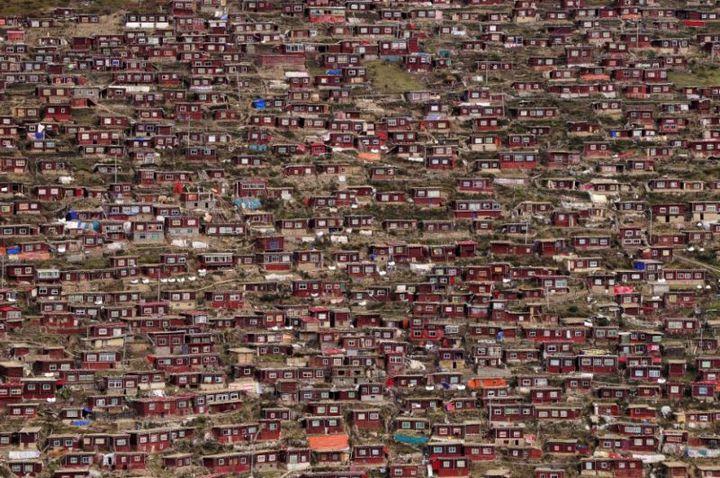 Тибетский монастырь Седа — гигантский муравейник! (2)