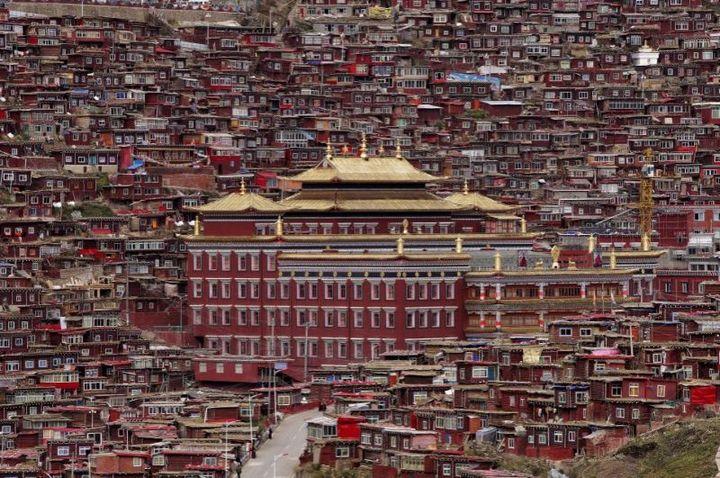 Тибетский монастырь Седа — гигантский муравейник! (1)