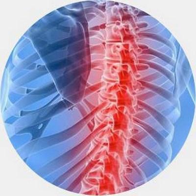 Ошибки эволюции в строении человеческого тела (7)