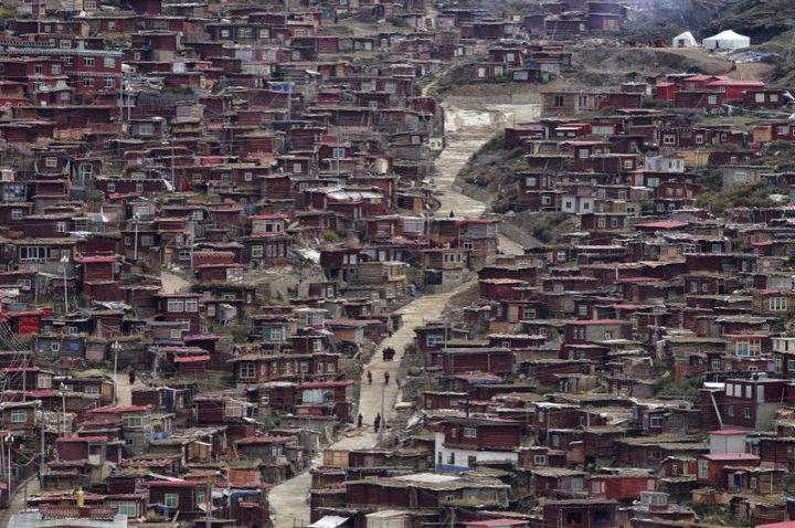 Тибетский монастырь Седа — гигантский муравейник! (3)