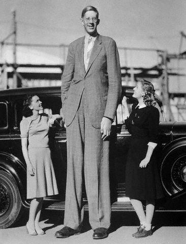 Роберт Першинг Уодлоу — самый высокий человек в мировой истории (3)