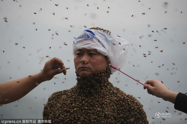 Китайца облепили 460 000 пчел (2)