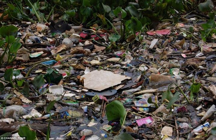 Индонезийский рай превратили в свалку (2)
