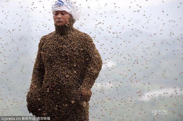 Китайца облепили 460 000 пчел (8)
