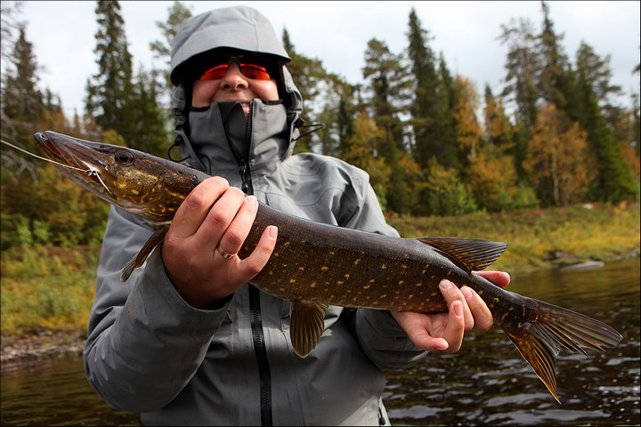 Отличная рыбалка с душевными фотографиями (43)