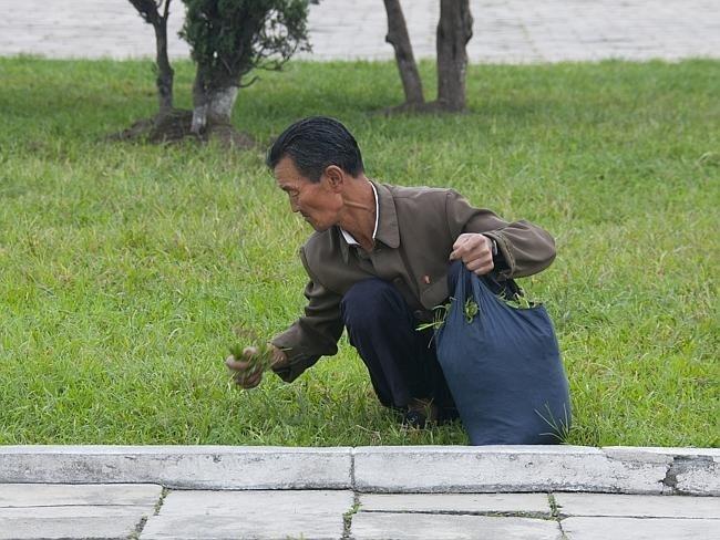 Запрещенные фотографии Северной Кореи (20)