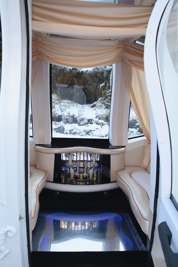Автомобиль-карета для свадебных торжеств (10)