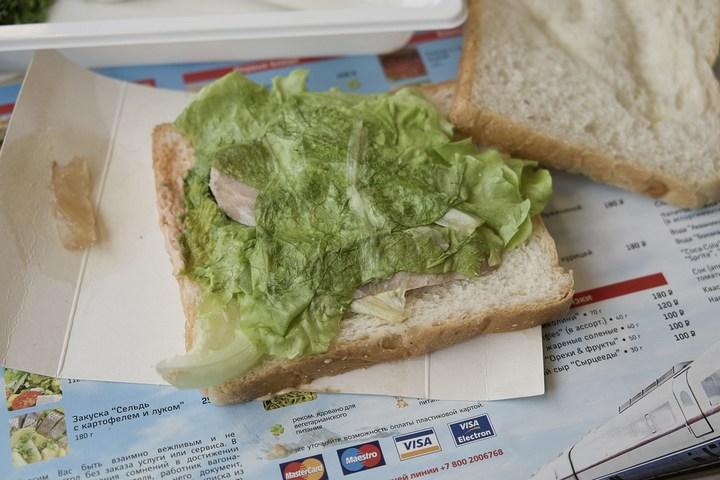 Еда из скоростного поезда Сапсан (14)