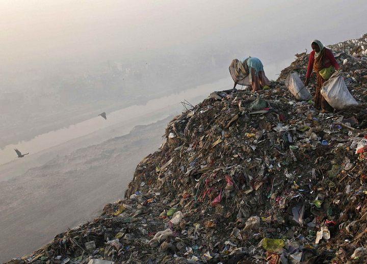 Работа на мусорных свалках в Индии (1)
