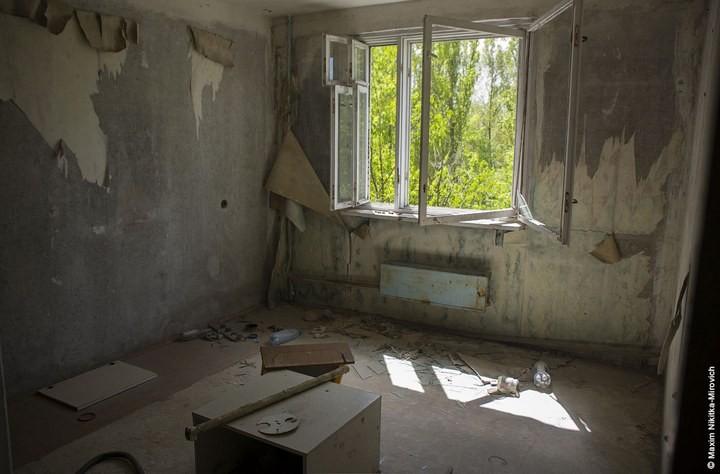 Мародёры Чернобыля (17)