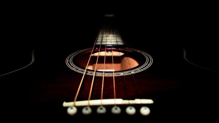 Влияние породы дерева на звук акустической гитары (3)