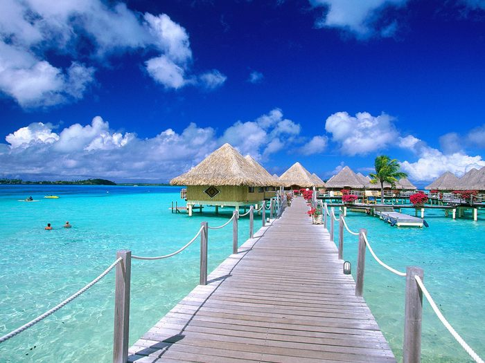 Несколько интересных фактов о Канарских островах (7)