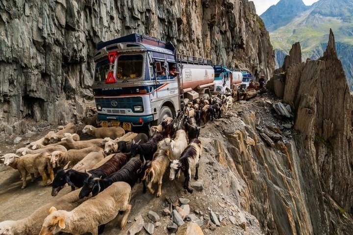 Опасная дорога в Индии (8)