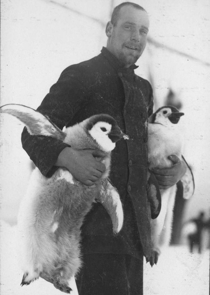 «Эндьюранс», или История выживания 28 человек среди льдов Антарктики (16)