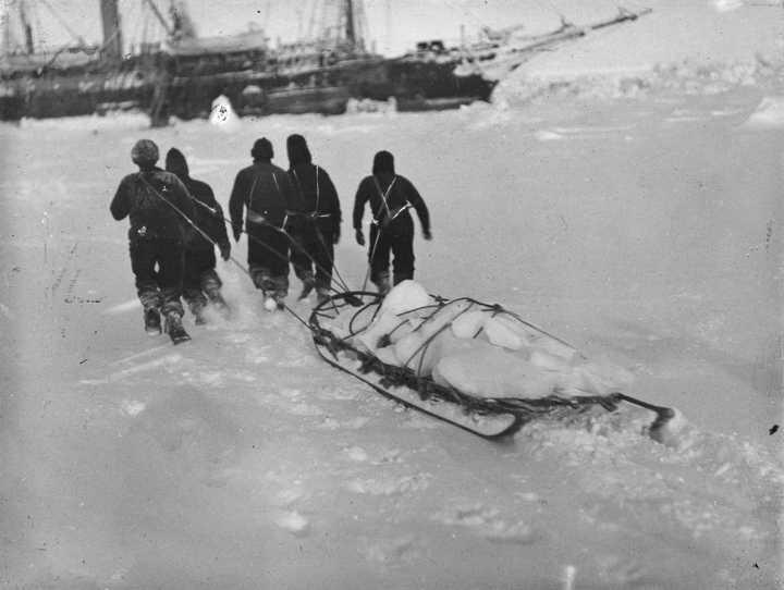 «Эндьюранс», или История выживания 28 человек среди льдов Антарктики (31)