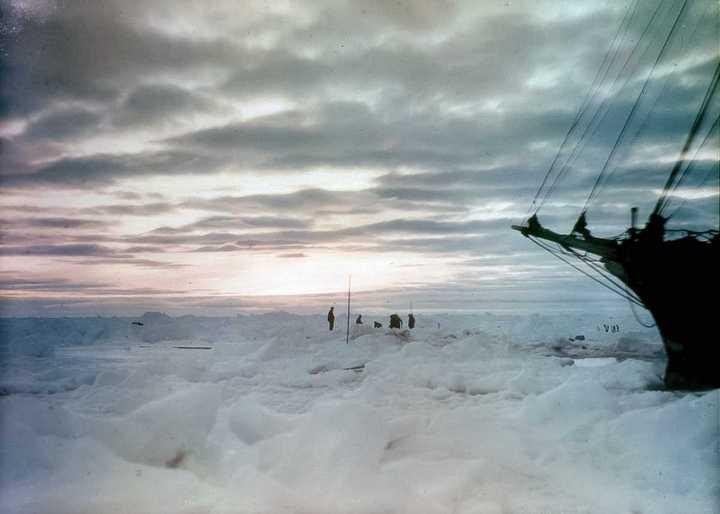 «Эндьюранс», или История выживания 28 человек среди льдов Антарктики (39)