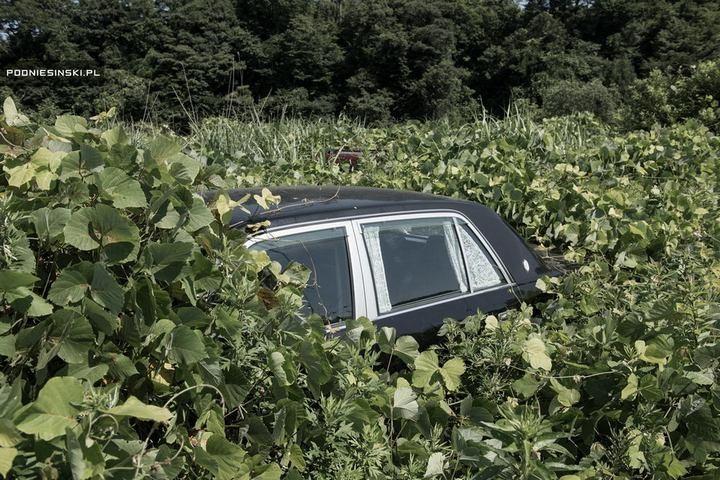 Фукусима через пять лет после трагедии (13)