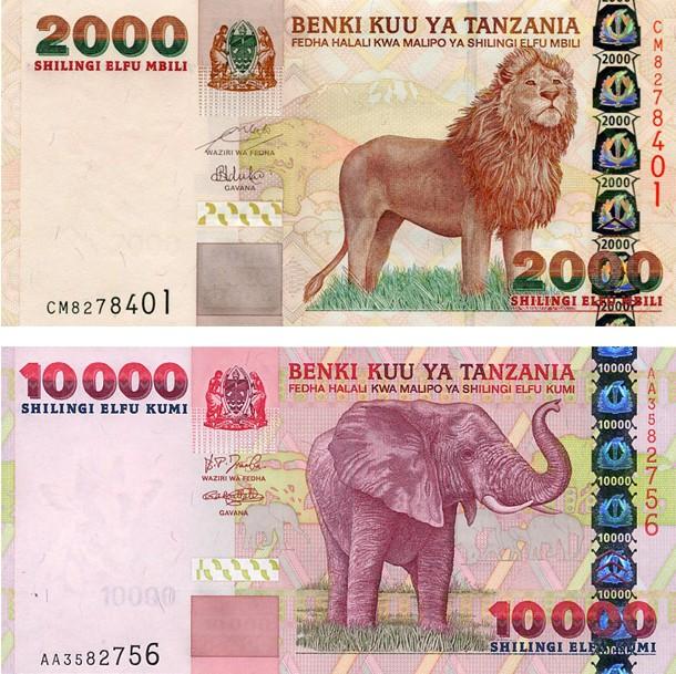 Самые красивые банкноты мира (40)