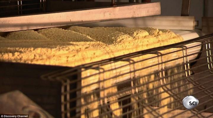 Как и из чего сделаны чипсы Pringles (6)
