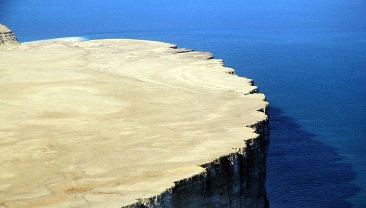 Арктический остров является пристанищем для 400.000 гнездящихся птиц (4)