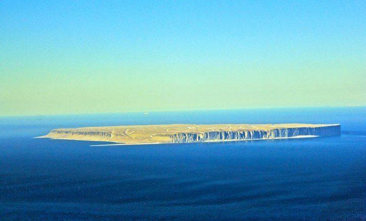 Арктический остров является пристанищем для 400.000 гнездящихся птиц (5)