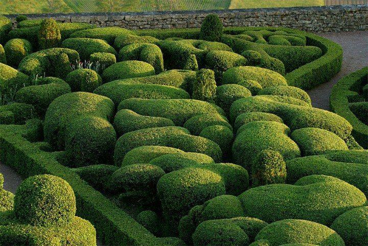 Самые удивительные сады мира (5)
