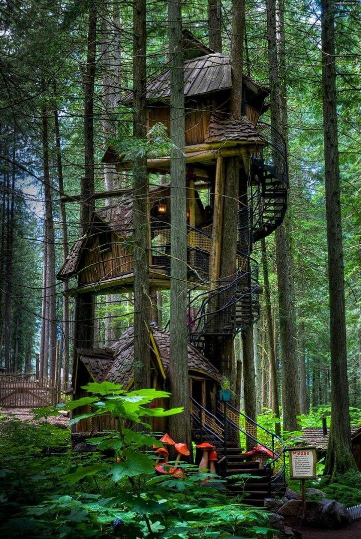 Удивительные дома на деревьях (2)