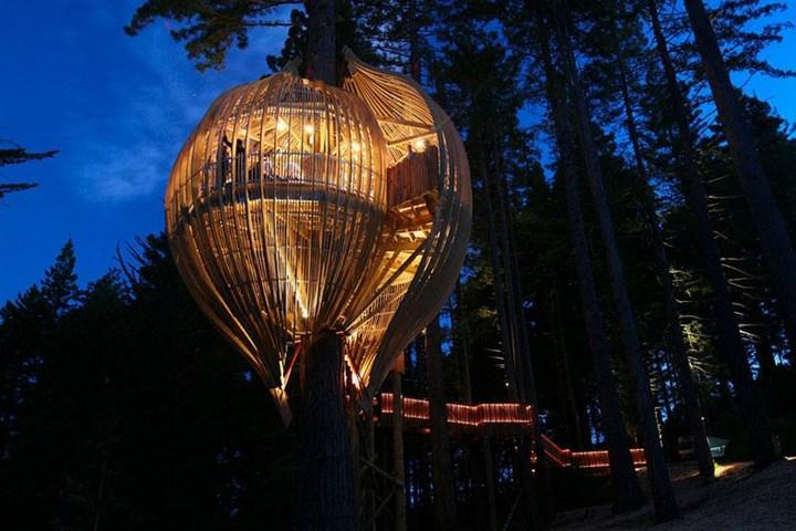 Удивительные дома на деревьях (4)