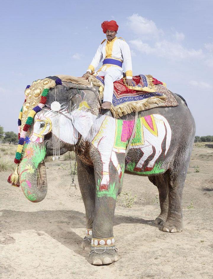 """""""Тюнинг"""" слона по-индийски (12)"""