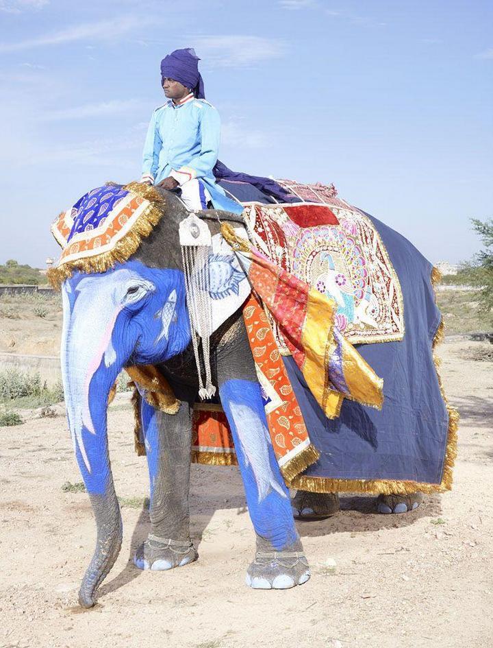 """""""Тюнинг"""" слона по-индийски (17)"""