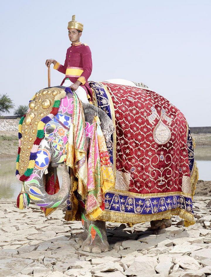 """""""Тюнинг"""" слона по-индийски (19)"""