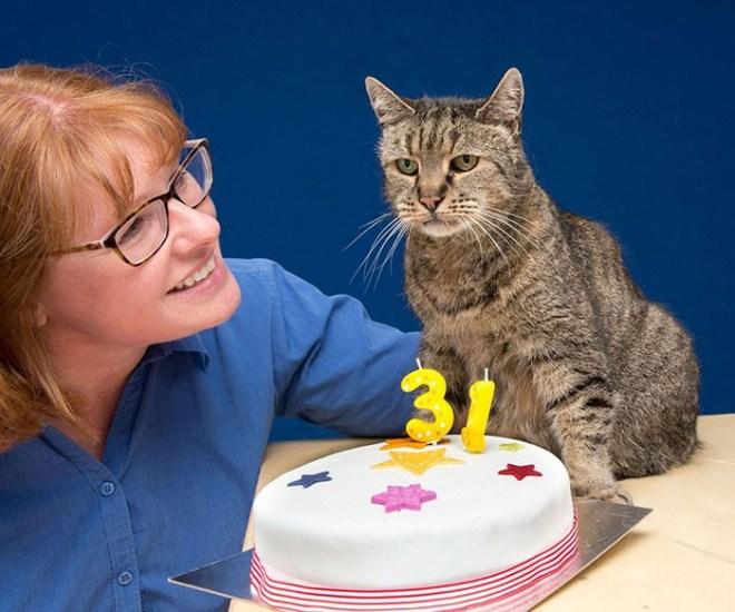 Самая старая в мире кошка отметила 31-й день рождения (1)