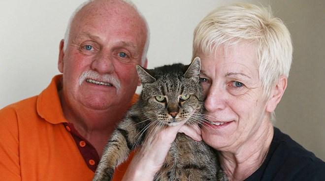 Самая старая в мире кошка отметила 31-й день рождения (6)