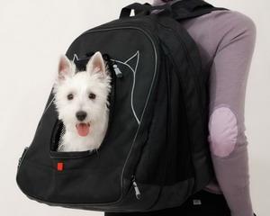 Самые необычные рюкзаки в мире (15)