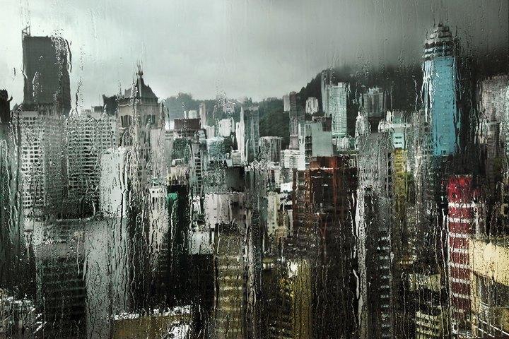 Дождливая погода — отличный способ получить красивые снимки (4)