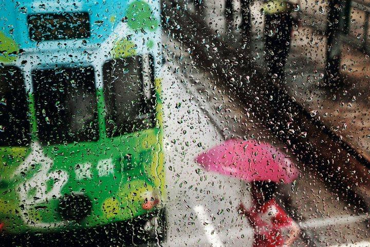 Дождливая погода — отличный способ получить красивые снимки (6)