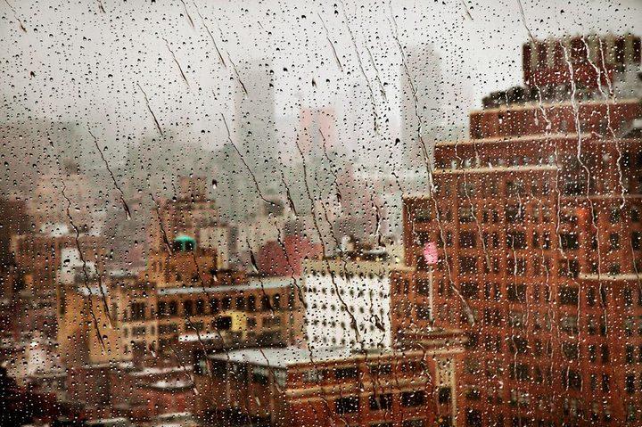 Дождливая погода — отличный способ получить красивые снимки (7)