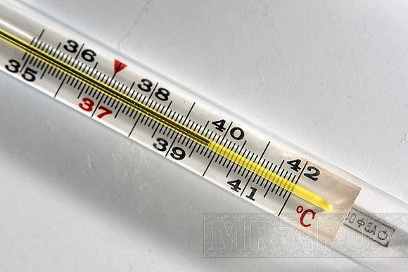Как и зачем поднимается температура? (2)