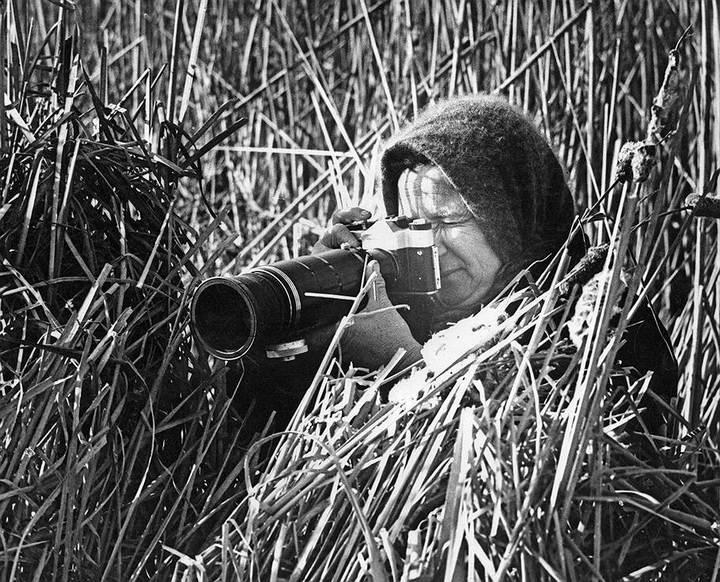 Советские фотографии из архива журнала «Огонек» (1)