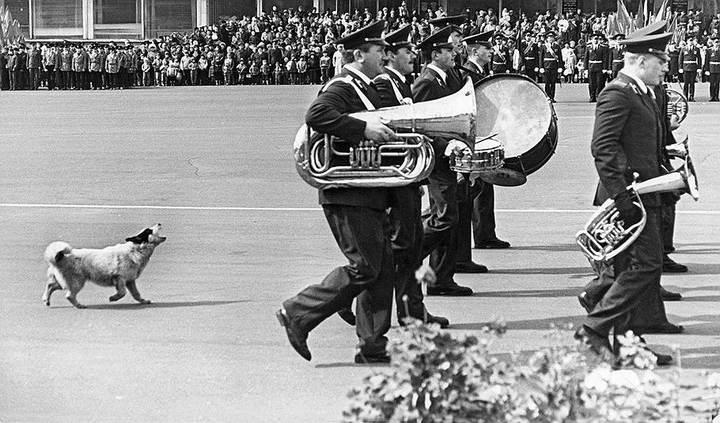 Советские фотографии из архива журнала «Огонек» (3)