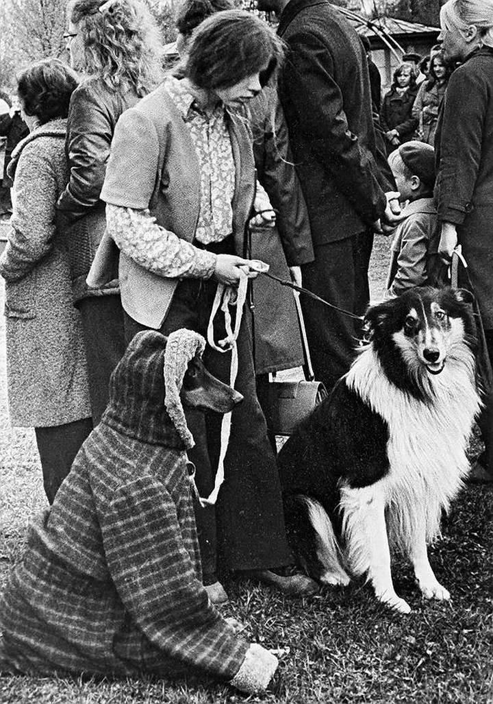 Советские фотографии из архива журнала «Огонек» (8)