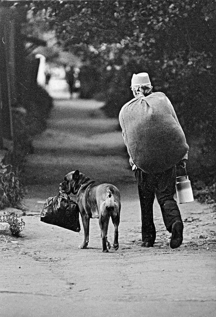 Советские фотографии из архива журнала «Огонек» (13)