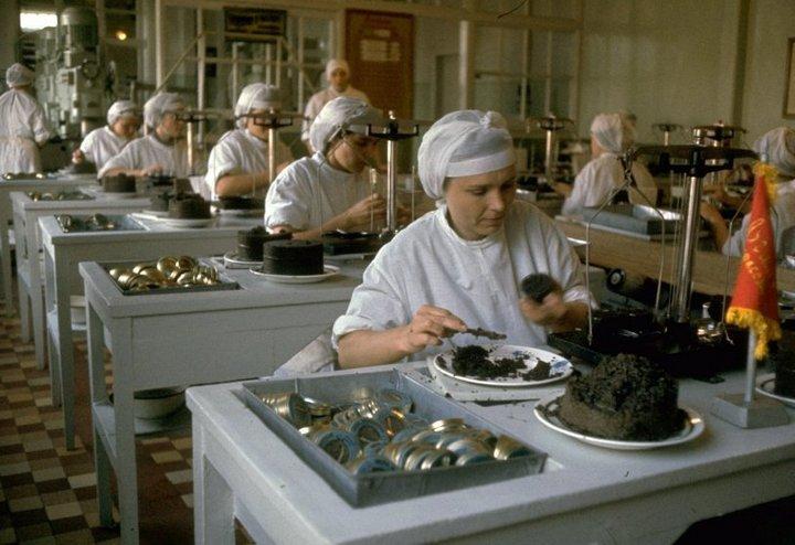 Добыча чёрной икры в Астрахани в 1960-м году (12)