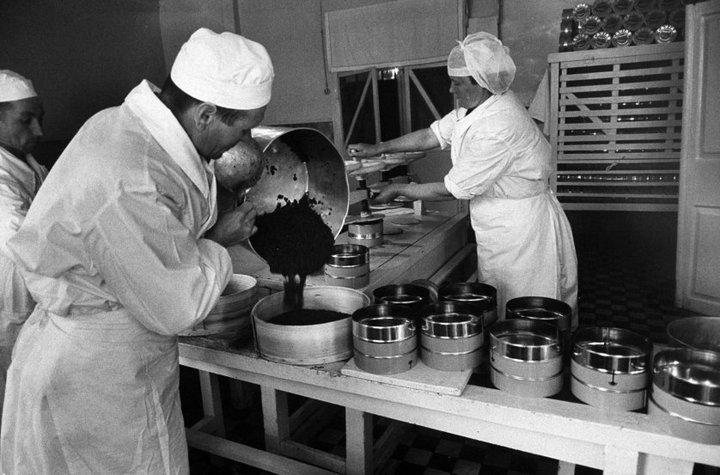 Добыча чёрной икры в Астрахани в 1960-м году (13)