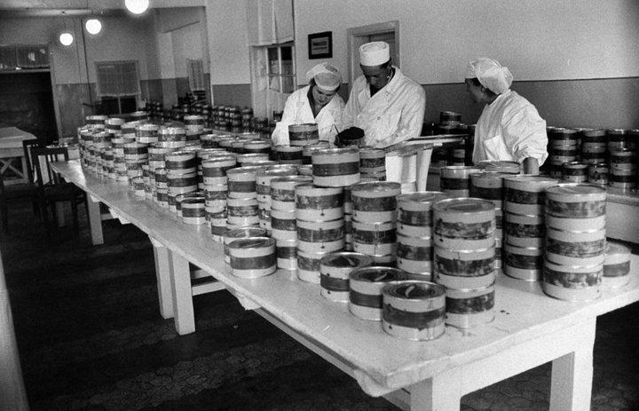 Добыча чёрной икры в Астрахани в 1960-м году (14)
