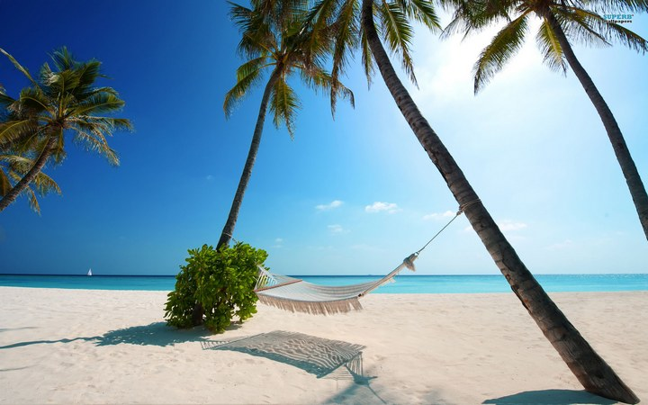 Мальдивы – сладкая мечта женщин… (5 фото)