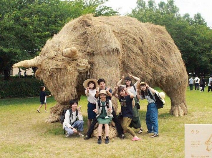 Потрясающие скульптуры из соломы от японских студентов (10)